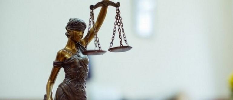 Профессиональная экспертиза во время суда – какие направления существуют?