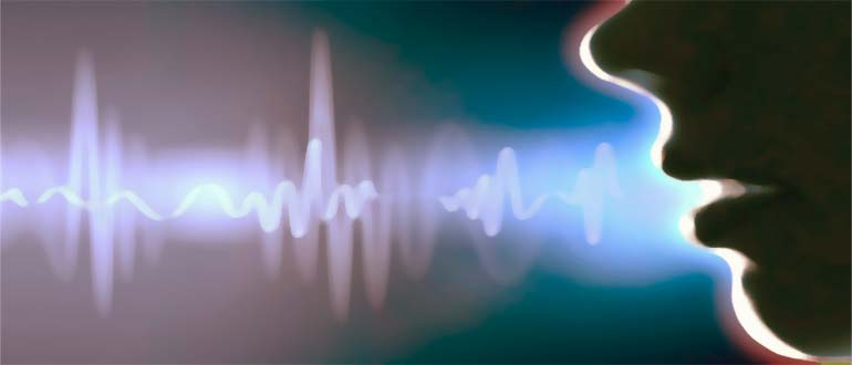 О проведении фоноскопической экспертизы