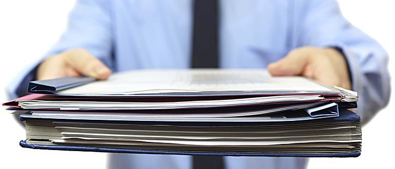 Документы и материалы для проведения экспертизы